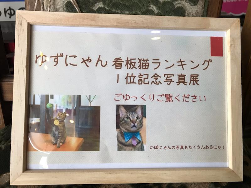 ゆずにゃん看板猫ランキング一位記念写真展