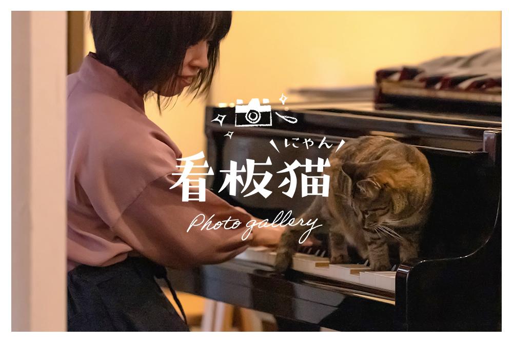看板猫 GALLERY vol.2